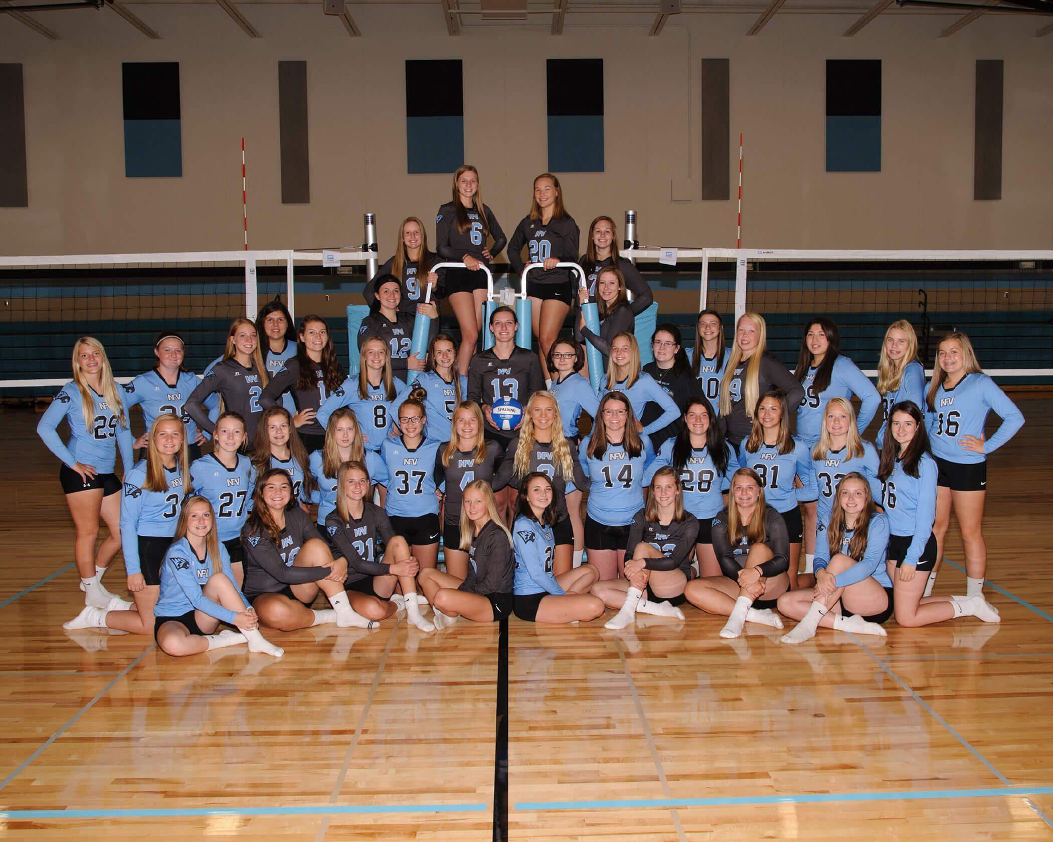 NFV High School 2017 Volleyball Team Photograph