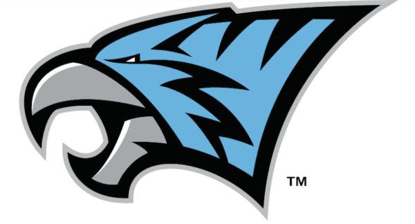 TigerHawk Mascot Logo